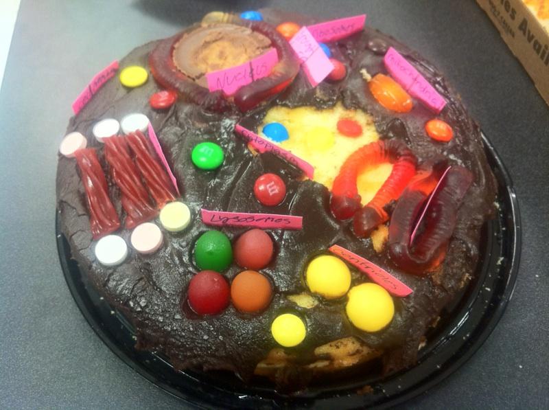 Model Cake Non Edible